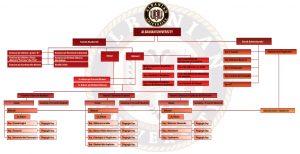 Organograma Albanian University